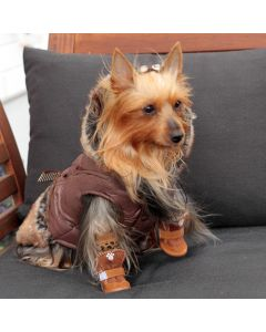 Dog Quilted Jacket | Paris Dream Café | Coffee Brown | DiivaDog