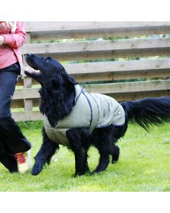 Dog Jacket | Danish Design