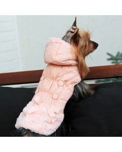 Dog Jacket | Paris Dream Rose Champaign | DiivaDog.com