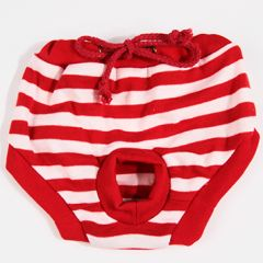 Dog Maturity Panties | Red & White Stripe | DiivaDog.com