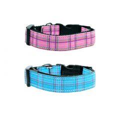 Dog Collar |Stipes | Pink & Blue