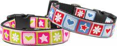 Dog Collar |Stars & Hearts